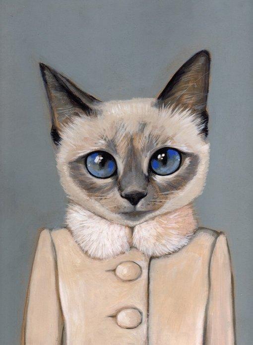 插画,搞笑,另类图片:穿衣服的猫