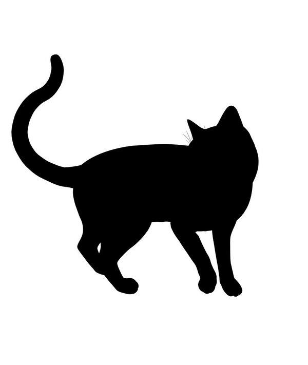 可爱,另类图片:黑猫系列